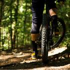Tipps für deinen MTB-Reifen Kauf