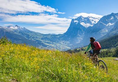Fahrradtour für Pros: Tipps und Tricks zur Routenplanung